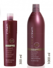 INEBRYA PRO-COLOR COLOR PERFECT SHAMPOO